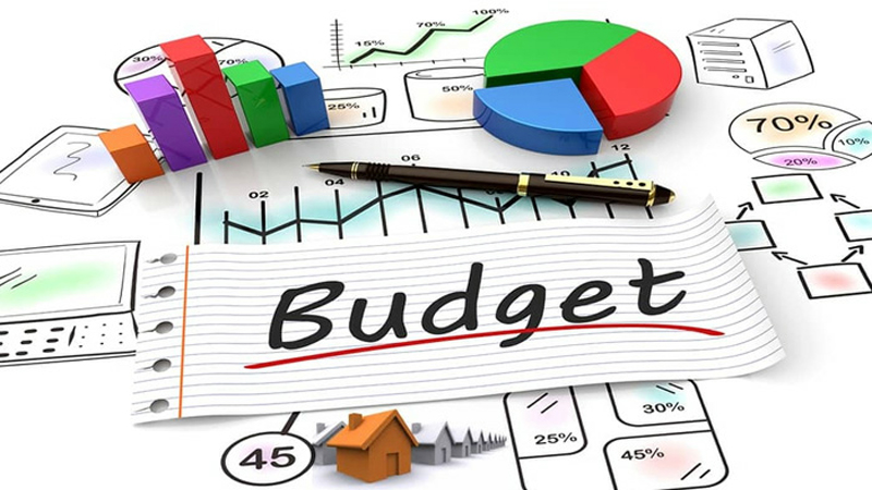 Fractional CFO Ann Diddlebock Discusses Budgets